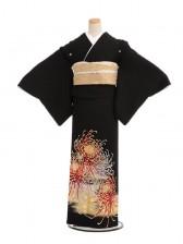 黒留袖Q4-61欄菊に蝶