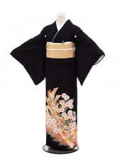 黒留袖Q4-67熨斗流れ菊