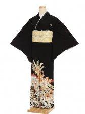 黒留袖レンタル4381菊と束熨斗目