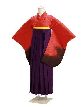 ジュニア袴 卒業式 オレンジ 0223【身長160cm位】