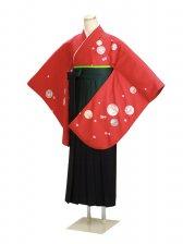 ジュニア袴 卒業式 赤 0270【身長150cm位】
