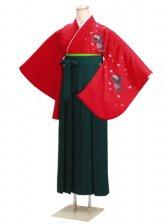ジュニア袴 卒業式 赤 0227【身長150cm位】