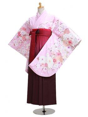 ジュニア袴 卒業式 ピンク 0301【身長160cm位】