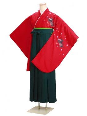 ジュニア袴 卒業式 赤 0227【身長160cm位】