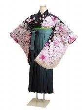 ジュニア袴 卒業式 黒 桜 0295【身長160cm位】