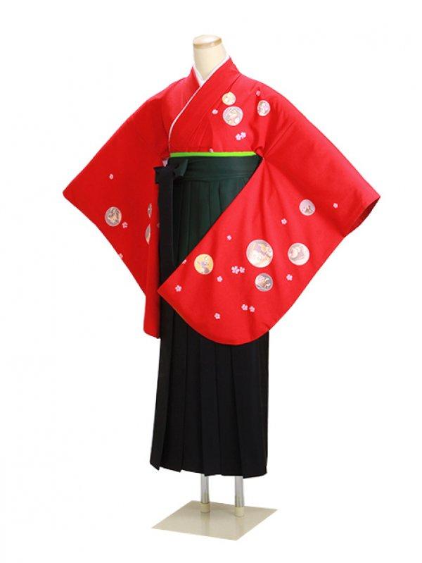 ジュニア袴 卒業式 赤 0271 柄袴【身長160cm位】