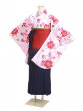 ジュニア袴 卒業式 白 桜 0297【身長150cm位】