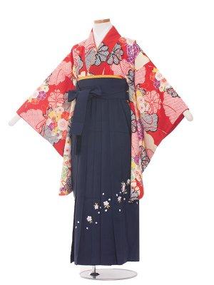 小学生卒業袴レンタル(女の子)168 赤地 しぼり調×花/紺色袴