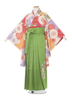 小学生卒業袴レンタル(女の子)166 白地×菊/黄緑袴