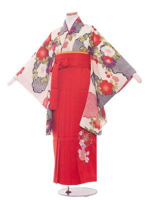 小学生卒業袴レンタル(女の子)182 白×椿/赤袴