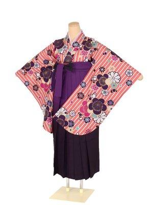 小学生女子袴 ストライプ ピンク 梅 ×紫