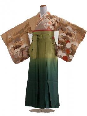 女袴(8175)からし地和花/緑袴95