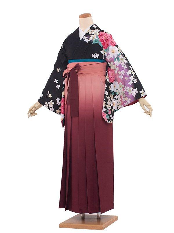 卒業袴レンタル(8188)黒/スモークサーモン袴100