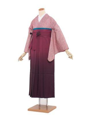 卒業袴レンタル(0037)えんじ・絞り/えんじ色袴