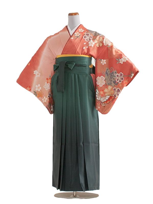 女袴(8185)サーモンピンク/緑袴95