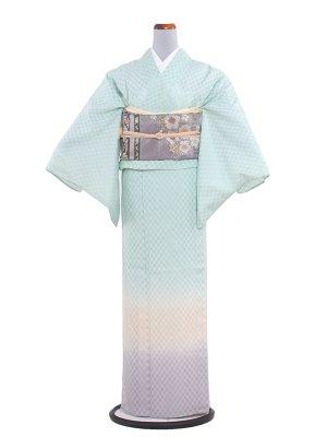【正絹】紋紗 49 黄緑/横ぼかし