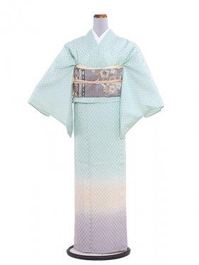 正絹紋紗 49 黄緑/横ぼかし