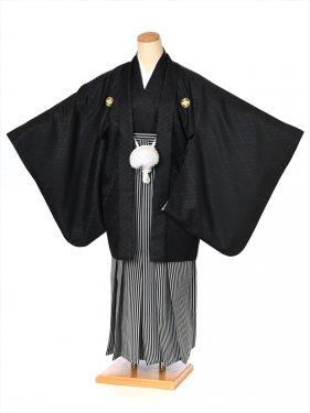 ジュニア用紋付袴セットレンタル8AQL11