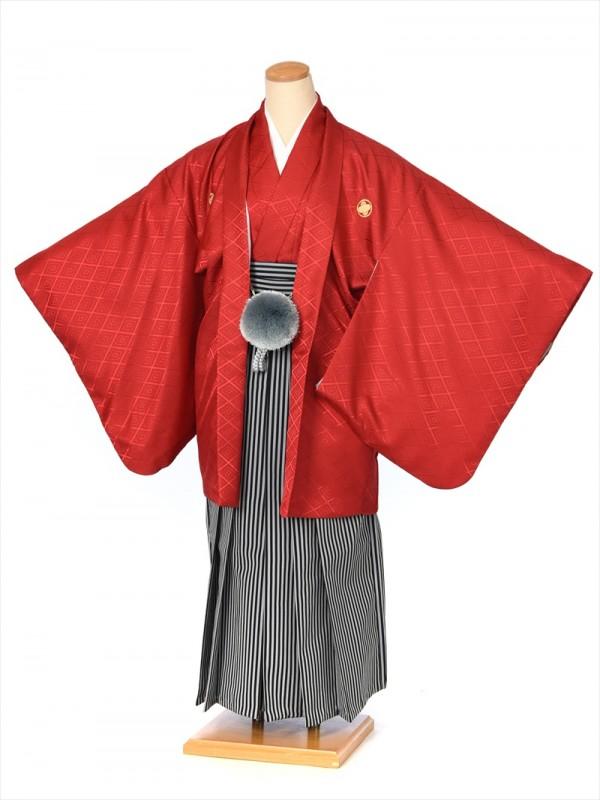 ジュニア用紋付袴セットレンタル8AQL07