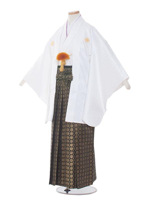 ジュニア(10男)jr1004 白/金の袴