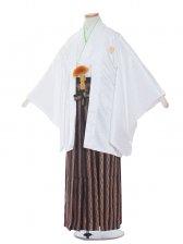 ジュニア(10男)jr1005 白/黒縞の袴