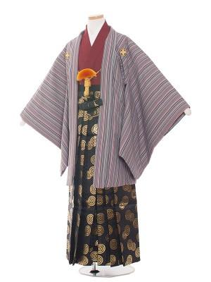 小学生卒業式袴レンタル(男の子)1552紫/縦模様