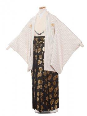 ジュニア(13男)1368クリームストライプ 袴85cm