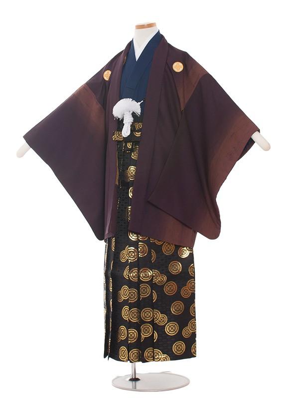小学生卒業式袴男児1378-2 ワイン/紺