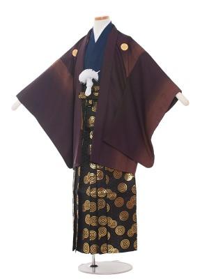 小学校 卒業式 男の子 袴1378-2 ワイン/紺