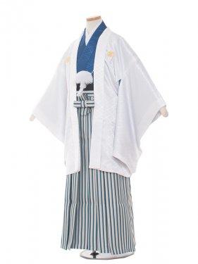 ジュニア(13男)1377-5 白/紺