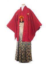 ジュニア(13男)jr1302  赤/黒金の袴