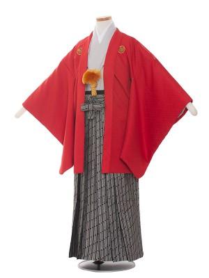 小学校 卒業式 男の子 袴1387 赤×グレー
