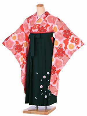 小学生卒業式袴(女の子)袴緑 Z010
