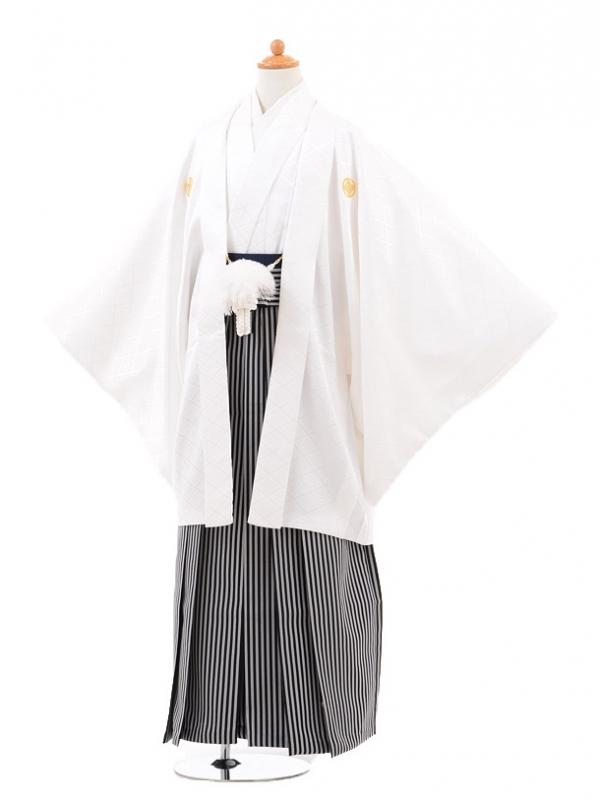 小学生卒業式袴男児0968白紋付×黒グレ‐縞