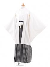 ジュニア袴男児0968白紋付×黒グレ‐縞袴