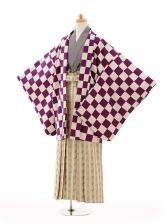 ジュニア袴男児0995紫市松×ベージュ縞袴