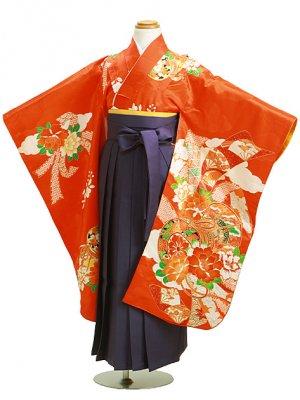 七五三 袴 5~7歳女児 ヌ 卒園式 入学式