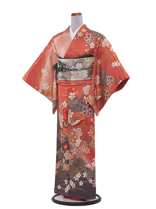 NEO訪問着 185サーモン地/桜と蝶