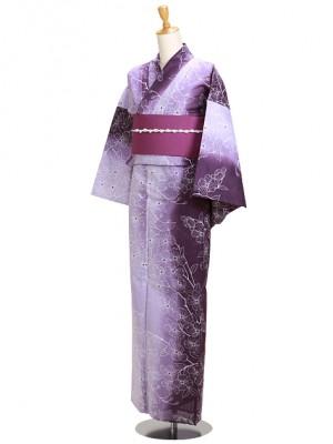 紫花/グラデーション Y050 浴衣 女性