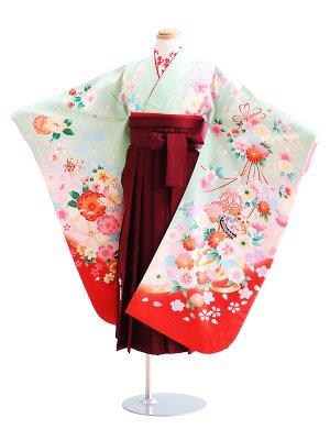 女児袴(7女)014薄緑/蝶・鞠・花|エンジ/刺繍・桜