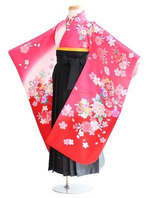 女児袴(7女)67-g8ピンク・白・赤/桜|緑/刺繍・桜