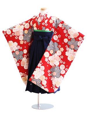 女児袴(7女)019赤/花|紺/刺繍・桜
