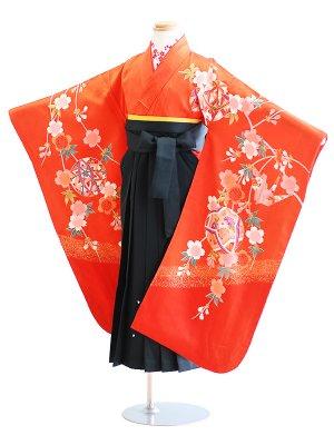 女児袴(7女)26-g3赤/鼓・鞠|緑/刺繍・桜