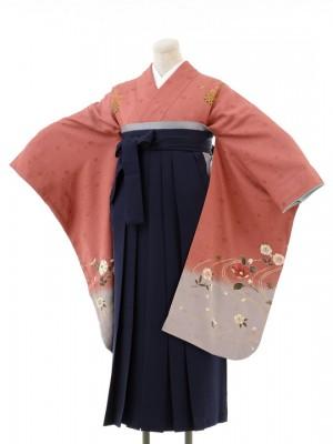 正絹女袴s130くすんだピンク地に桜/紺無地袴