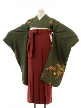 正絹女袴s123濃オリーブグリーン地に藤/エンジ無地