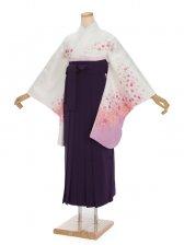 女袴s020白地に花づくし/紫無地