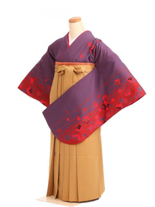 女袴s042紫地に花のぞき/鬱金無地