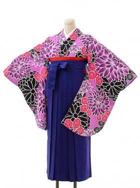 女袴s162京かいらし紫/青縞袴