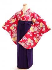 女袴s170赤地に華雪輪/紫無地袴