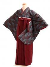 女袴s171グレー地に矢絣/エンジ無地袴